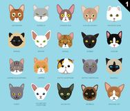 Cat Faces Icon Cartoon 1 Foto de archivo