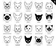 Cat Faces Icon Cartoon Black e bianco Fotografie Stock