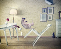 Cat falling. In vintage room. 3d concept Stock Image