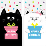 Cat family couple with gift box bow. Flyer poster set. Cute funny cartoon character. Happy Birthday. Greeting card. Flat design. W Stock Photos