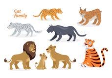 Free Cat Family. Felidae. Pantherinae Tiger Lion Jaguar Royalty Free Stock Images - 85761549