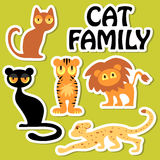 Cat family set Royalty Free Stock Photography