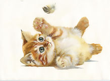 Cat and feather. Watercolor Animal Collection: Cat and feather