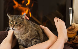 Cat and feet in front of the fireplace Royalty Free Stock Images