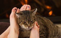 Cat and feet in front of the fireplace Stock Photos