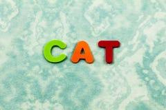 Cat feline pet animal spell preschool children letters. School learning plastic foam spelling friend love teach royalty free stock photo