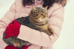 Cat in female hands Stock Photo
