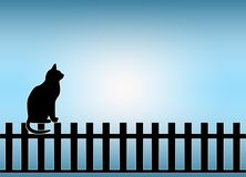 Cat on Fence Stock Photo