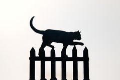 Cat on Fence Royalty Free Stock Images