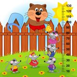 Cat on fence height measure (in original proportions 1 to 4) Royalty Free Stock Photo
