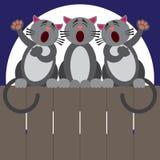 Cat Fence Trio Royaltyfri Foto