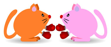 Cat fight. Two cute cartoon cats fighting while wearing boxing gloves Royalty Free Stock Images