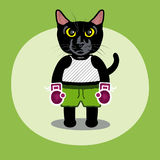 Cat Fight. A black cat in boxing gear getting ready to fight Royalty Free Stock Photography