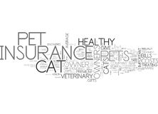 A Cat Fight For Insurance Word Cloud. A CAT FIGHT FOR INSURANCE TEXT WORD CLOUD CONCEPT Royalty Free Stock Photo