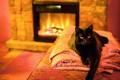 Cat by a fireplace. Black cat warming up itself by a fireplace stock images