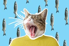 Cat and fish collage, pop art concept design. Minimal vibrant background