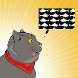 Cat and fish. Colorful illustration with  cat and fish on a sun background for your design Royalty Free Stock Images