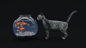 Cat fish. Cat fish concept. 3d rendering Stock Photos