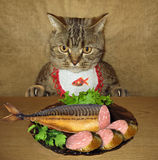 Cat and fish sausage Royalty Free Stock Images