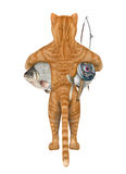 The cat fisher holds a big fishes. Stock Image