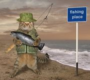 Cat fisherman near the sign stock photography
