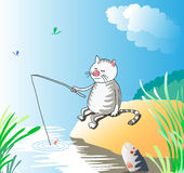 Cat fishing. At the river in summertime Stock Image