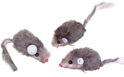 Cat Fishing Toy - Mouse on Rope with Pole  White Royalty Free Stock Photos