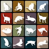 Cat flat icon. Cat flat icon 16 pose white shape royalty free illustration