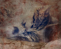 Cat fleas gnaws wool. Photos in the grunge style Stock Photos