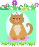 Cat Flower Head Royalty Free Stock Image