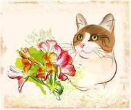 Cat with flowers Royalty Free Stock Photos