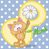 Cat with flowers. Greeting card Cat with flowers Stock Images