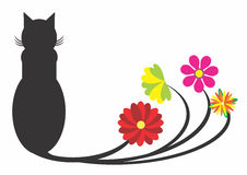 Cat Flowers nera Fotografia Stock