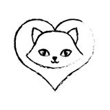 Cat fluffy lovely animal love sketch Stock Photos