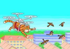 Cat flying in the sky. Royalty Free Stock Photo