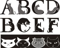 Cat font. Animalistic font, cat-letters , grey and black vector illustration