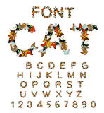 Cat font. catlike ABC. letters of cats. Pet alphabet. Pets typog Royalty Free Stock Photography