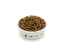 Cat food. Bowl with cat food on white background Stock Photos