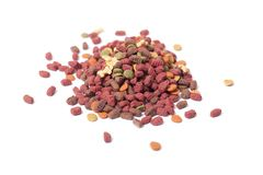 Cat food. stock images