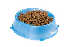 Cat food in a bowl Royalty Free Stock Photos