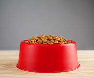 Cat food bowl. Royalty Free Stock Photography