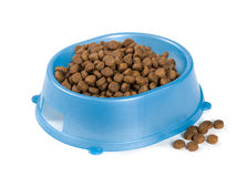 Cat food in a bowl Royalty Free Stock Photo