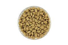 Cat food in a glass container Stock Photo