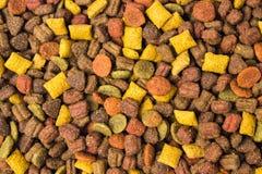 Cat food granule background pattern. Cat food granule background texture pattern stock photography
