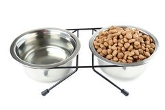 Cat food and water in bowls. Isolated on white background royalty free stock images
