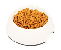 Cat Food In White Bowl seca Imagenes de archivo