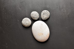 Cat foot steps. Made of a pebble stone Royalty Free Stock Image