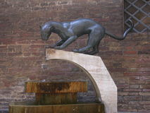 Cat Fountain. Fountain found in Siena, Italy stock images