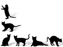 Cat frame. Illustration about funny cats silhouette in typical poses Royalty Free Stock Images