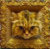 The cat in frame. The head of beautiful flaffy brown tabby cat with big black eyes in vintage wooden frame, decorated with carved patterns and bronze stock images